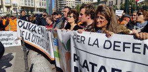 Llauradors d'Oliva participen a la Manifestació per la Defensa de la Dignitat del Llaurador en València