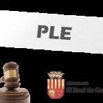 SESSIÓ PLENÀRIA EXTRAORDINÀRIA 2 DE JULIOL DE 2019