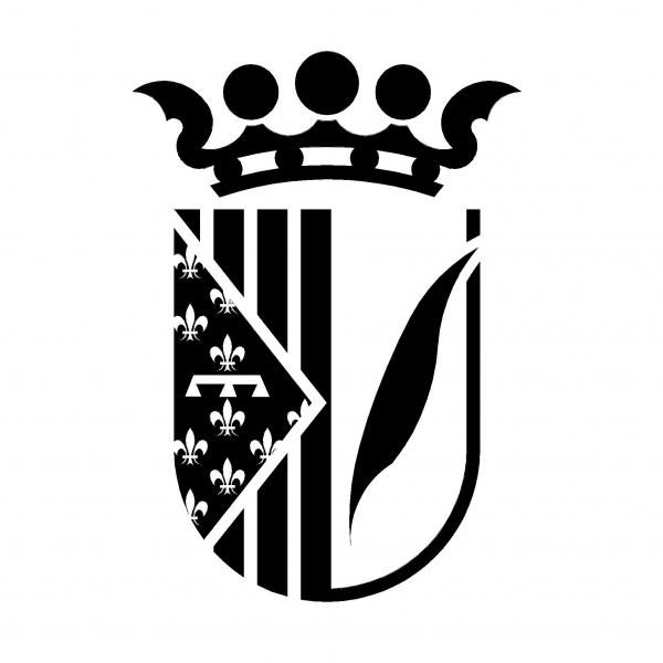 COMUNICAT OFICIAL FESTES 2020 | Ajuntament de Palma de Gandia
