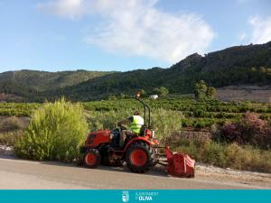 El Ministeri de Transports està realitzant tasques de neteja i desbrossament en els marges de l'AP-7 del terme d'Oliva