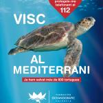 Tavernes participa en la campanya 'Tortugues en el Mediterrani' de la Fundació Oceanogràfic