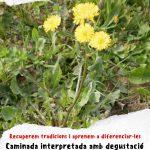 cartell_Plantes_Mengívoles.jpeg